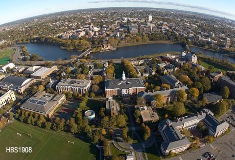 About Cambridge Fellows